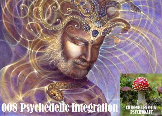 Podcast Interview on Chronicles of a Psychonaut