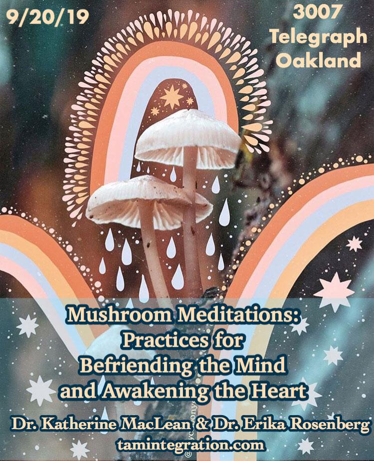 mushroom meditations