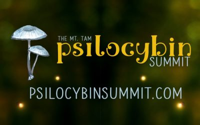 Psilocybin Summit Core Values.