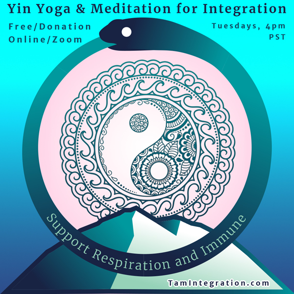 yin yoga for integration